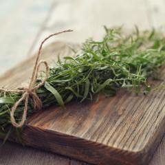 Estragon-Artemisia dracunculus
