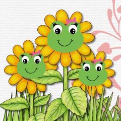 Nagietek Piruetek seria dziecięca-Calendula officinalis