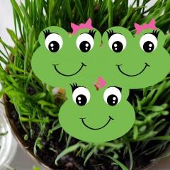 Rzeżucha Rzeżuszka seria dziecięca-Lepidium sativum