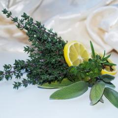 Tymianek właściwy-Thymus vulgaris