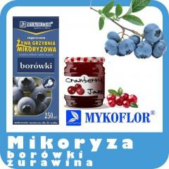 Mikoryza Borówki, Żurawiny-