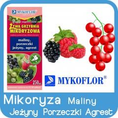 Mikoryza Maliny, Jeżyny, Porzeczki, Agrest-
