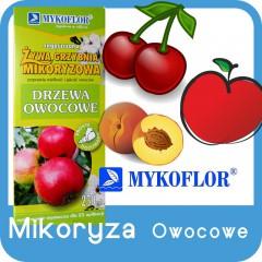 Mikoryza Drzewa Owocowe-